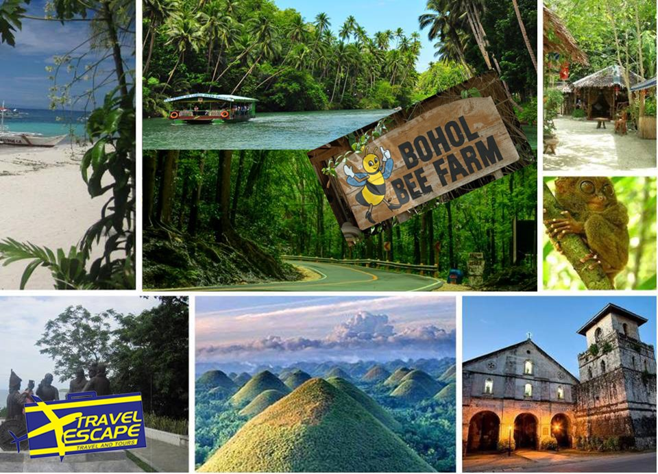 Bohol Countryside W Bee Farm Travel Escape Travel And Tours